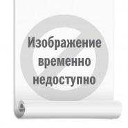 Энергодар (Превикур) 500 мл