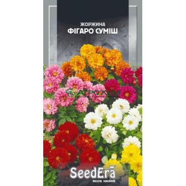 Георгина изменчивая Фигаро смесь 0.5 г