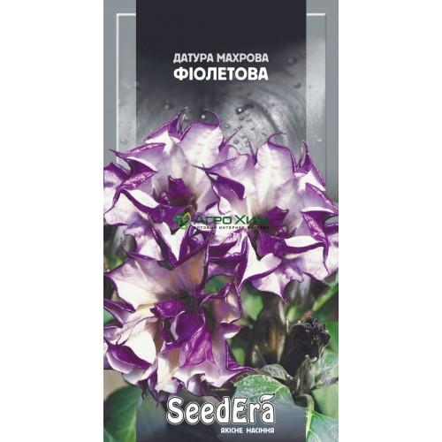 Датура (Дурман) Махровая фиолетовая 5 шт