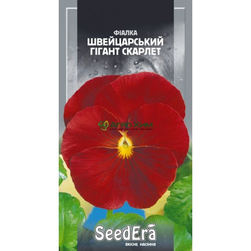 Фиалка садовая Швейцарский гигант Скарлет двухлетняя 0.1 г