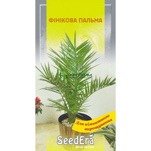 Финиковая пальма 2 шт