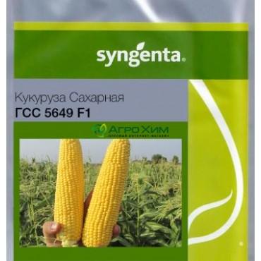 Кукуруза сахарная ГСС5649 F1 100 000 шт (Syngenta)